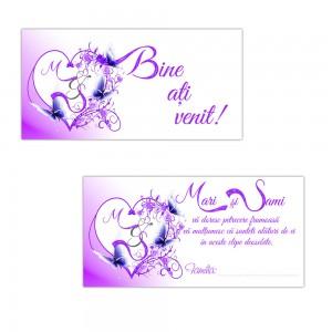 Plicuri De Bani Violet