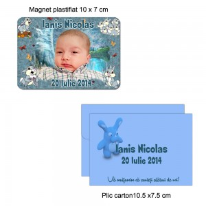 Magneti plastifiati