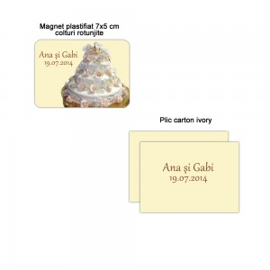 Marturie nunta si baloane