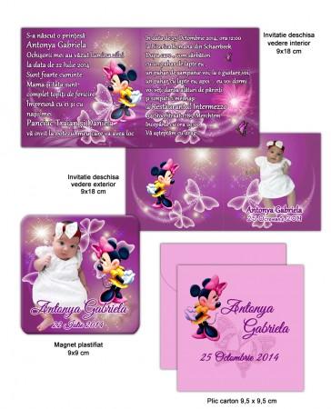 Accesorii botez Minnie Mouse