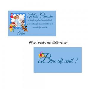 Plicuri handmade albastre