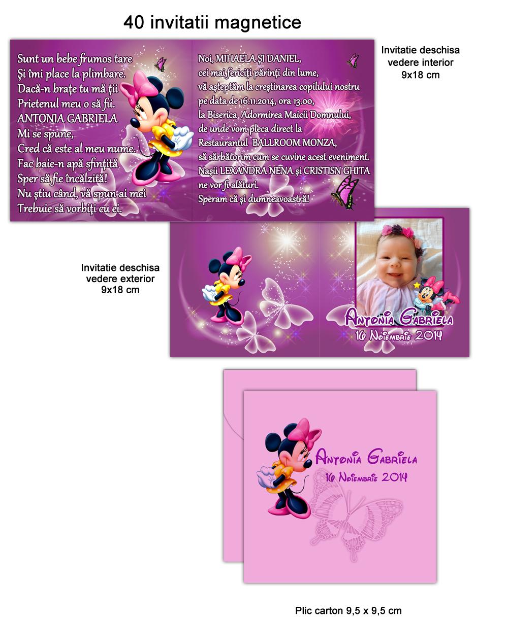 Invitatii Minnie Mouse
