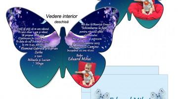 Invitatii Fluture