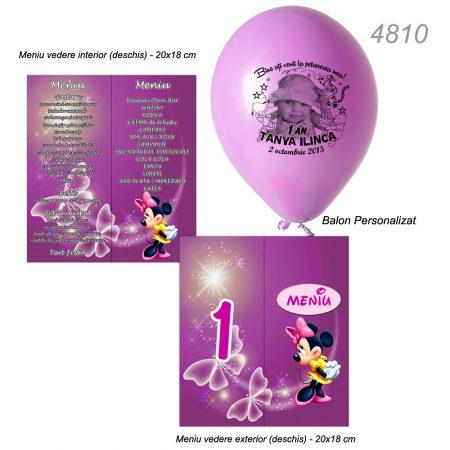 Meniuri Minnie Mouse Cu Baloane Winnie Botez