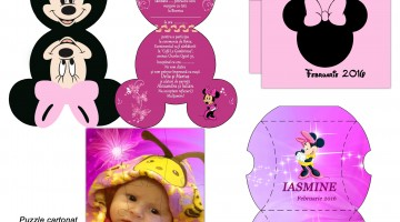 Invitatii Minnie Mouse Botez