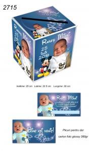 Plicuri Si Cutie Bani Mickey