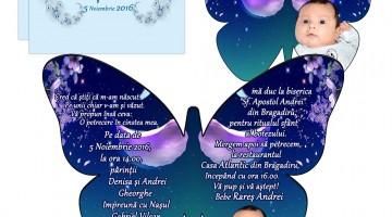 Invitatii Forma Fluture Plic Inclus