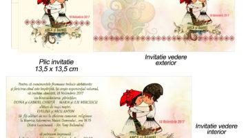 Invitatii Nunta Tematica Traditionala