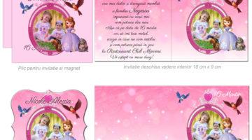 Invitatie Cu Magnet In Tematica Printesa