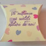 Cutiute Marturii Pillow